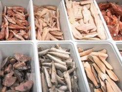 Спорная тема: от рыбы польза или вред? Imgqwq10