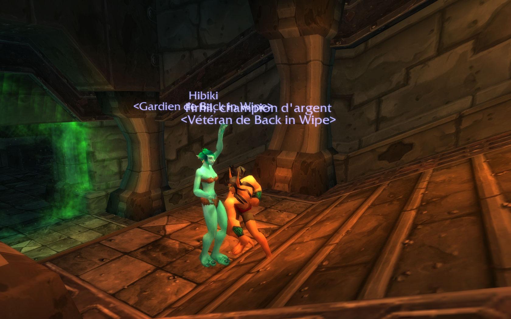La vie dans la guilde Wowscr27