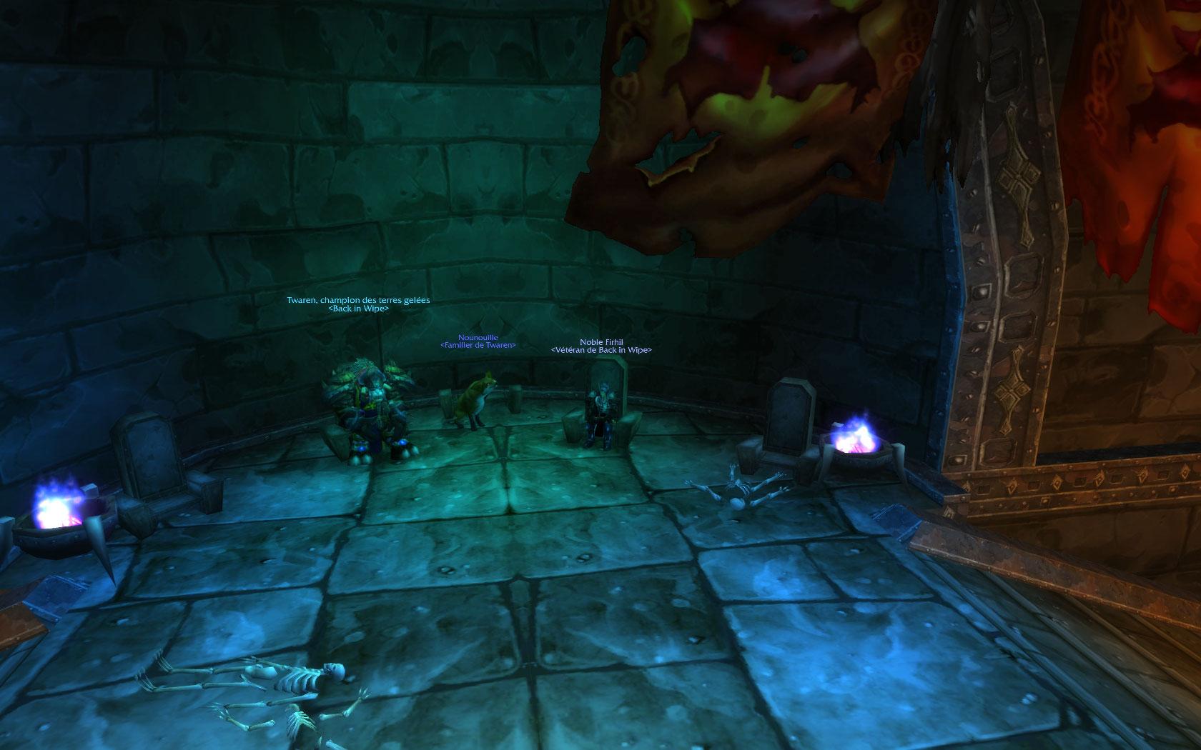 La vie dans la guilde Wowscr29