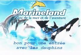 LA PHOTO DU JOUR: - Page 16 Images10