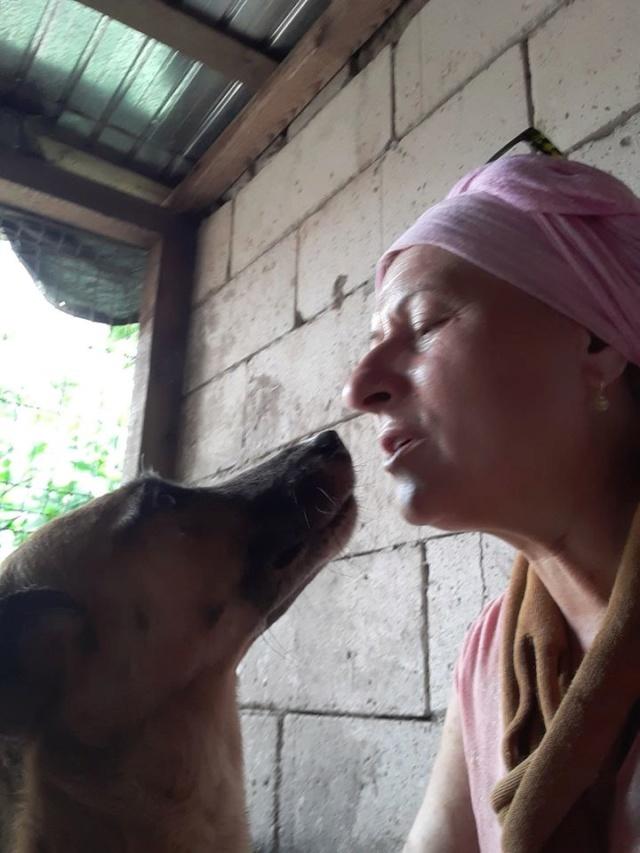 cayenne - CAYENNE, femelle, née en 2013 - SAUVÉ DE L'EQUARRISSAGE DE MIHAILESTI avec SEVEN - parrainée par NénéSC-SOS-R-SC 10341310