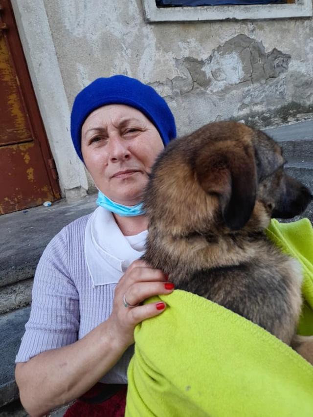 TSARINE, femelle, née en 2020, trouvée blessée au cou le 13/05/2021 - Parrainée par les3loulous-R-SC 18634810