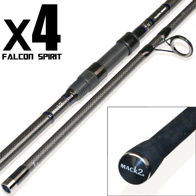 cannes falcon spirit  et biwi leon 2/3 place 92478-11