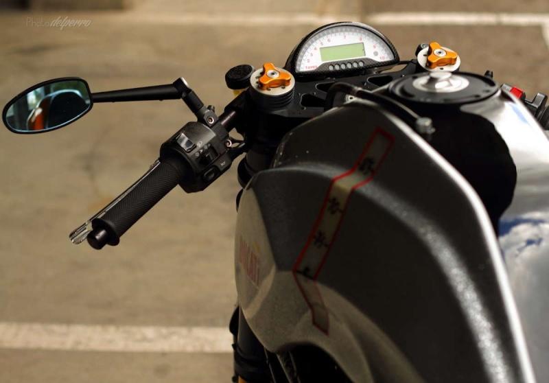 Rad Monster Rad_sh12