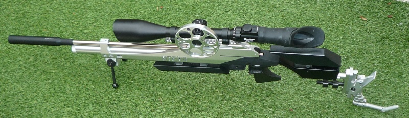 Les armes de Harry P1030716