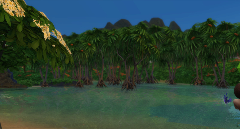 Grab Your Sunscreen and Beach Towel We Are Off to Sulani! 07-02-13