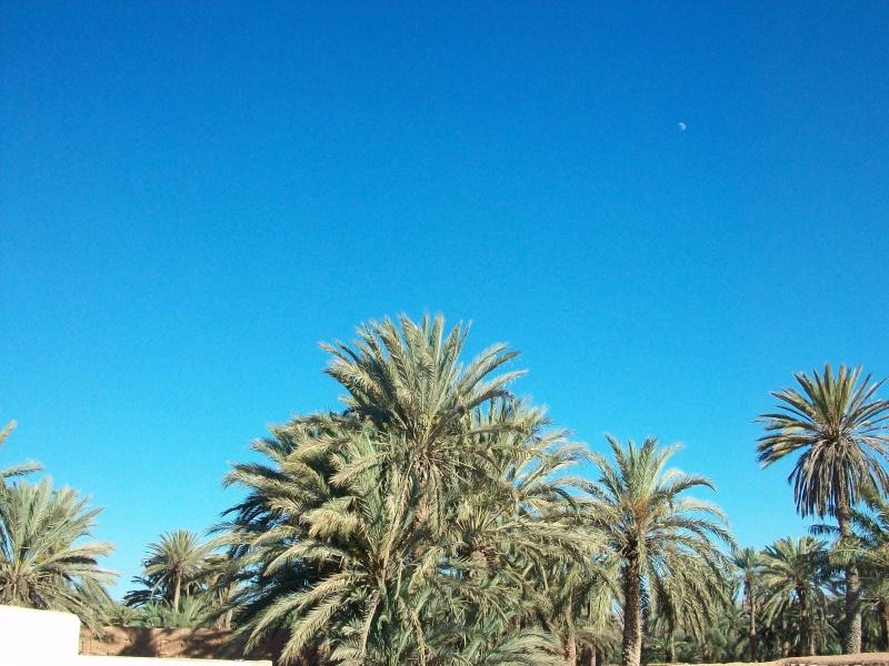 En route vers le sahara, avec ma Mercedes!  - Page 4 100_4312