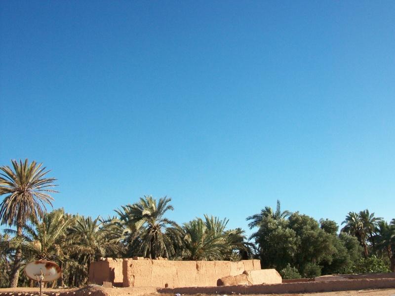En route vers le sahara, avec ma Mercedes!  - Page 4 100_4313