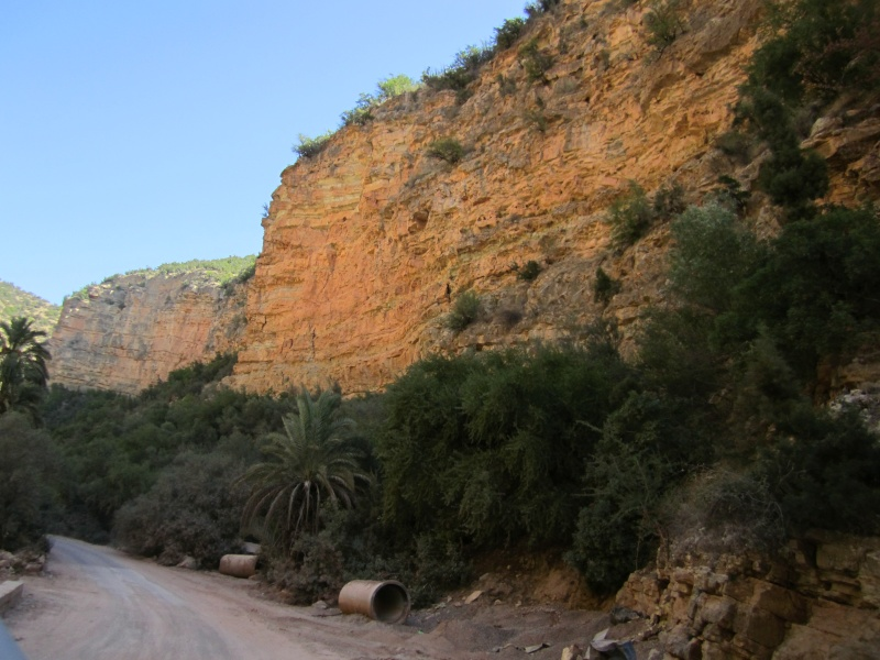 En route vers le sahara, avec ma Mercedes!  - Page 4 Img_0011