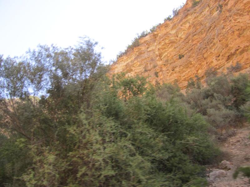 En route vers le sahara, avec ma Mercedes!  - Page 4 Img_0012