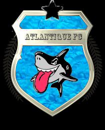 Bannière et logo du club !! - Page 3 Logo_a13