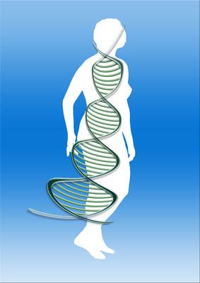 Das Unsterblichkeits-Gen hat jeder Mensch Gerd_a15