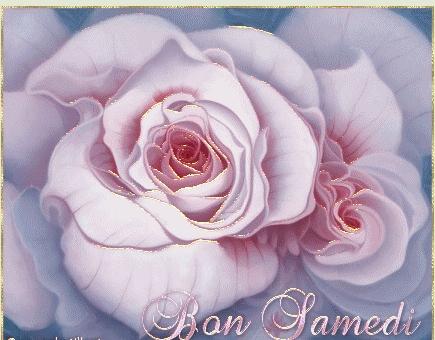 Bon Samedi Bon_sa10