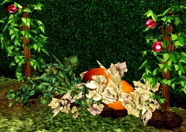 [Sans nouvelles de l'auteur, à classer le 09/04] [SIMS 3] bug sur les plants au jardin Screen11