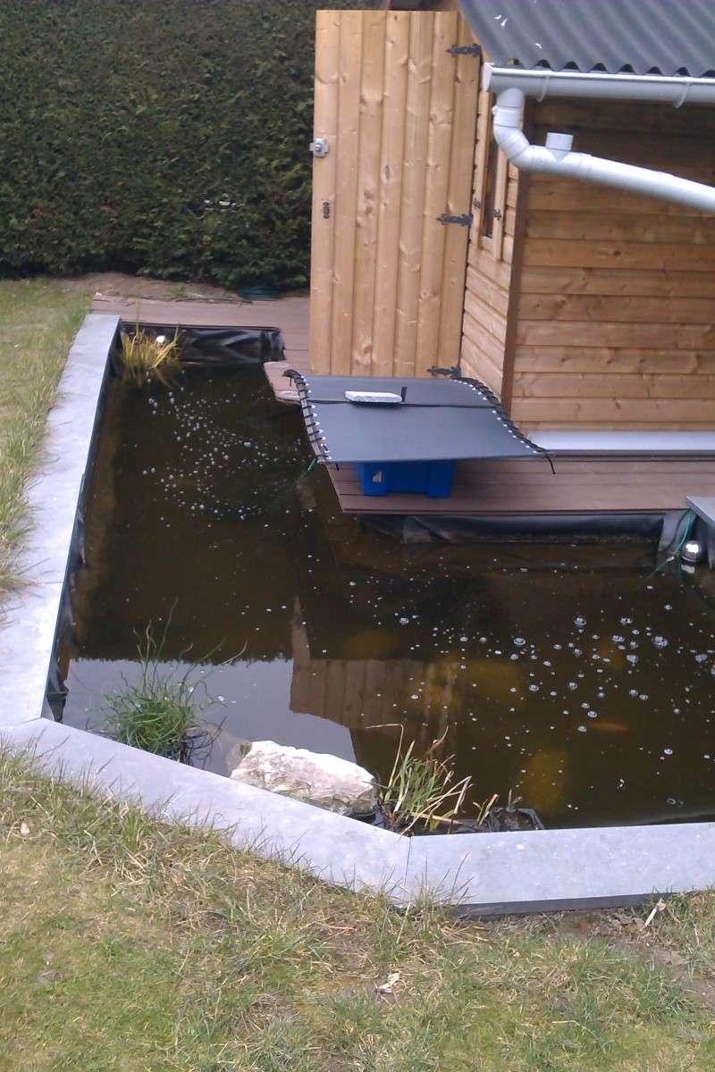mon bassin Imag0111