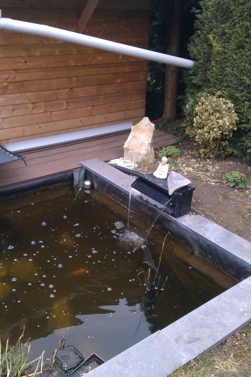 mon bassin Imag0112