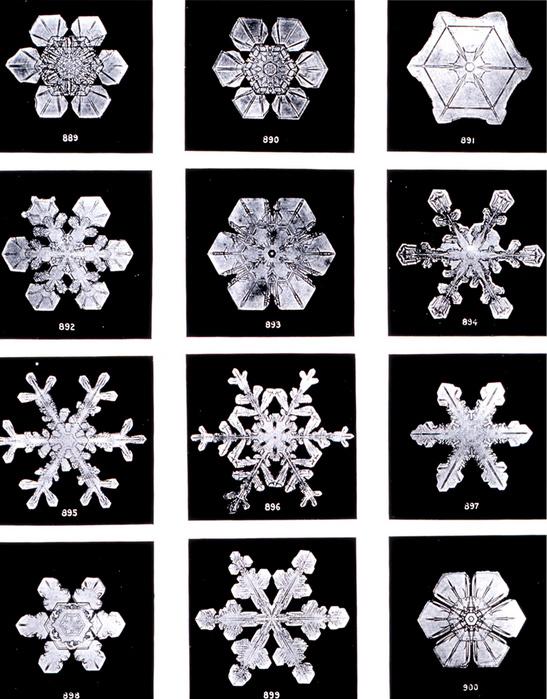 Необычные свойства воды.Исследования Масару Емото (Masaru Emoto) 14393410