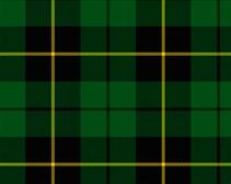 Scottish Nobleman - 75mm Pegaso Tartan10