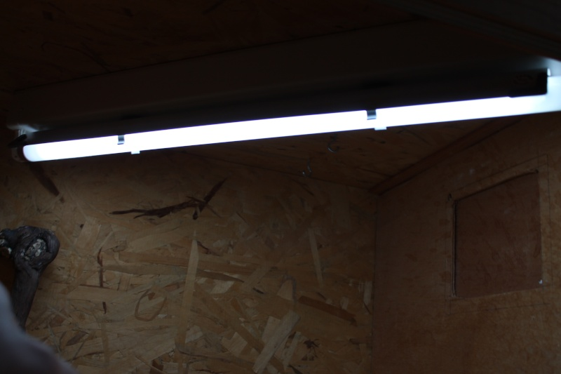 Installation d'un néon: comment faire ? Img_1237