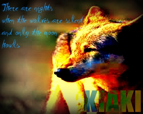 Midnight's Wolves Red_ti10