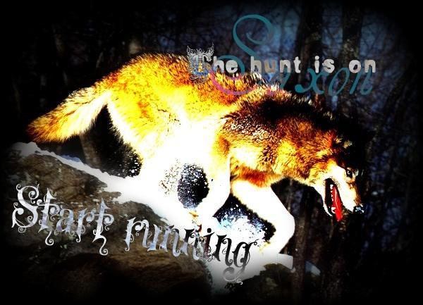 Midnight's Wolves Saxon10