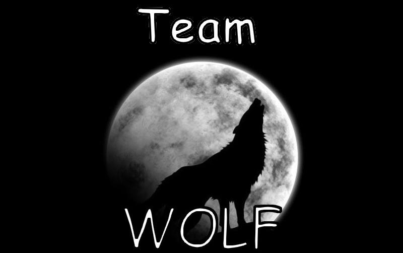 Wolf Team FR