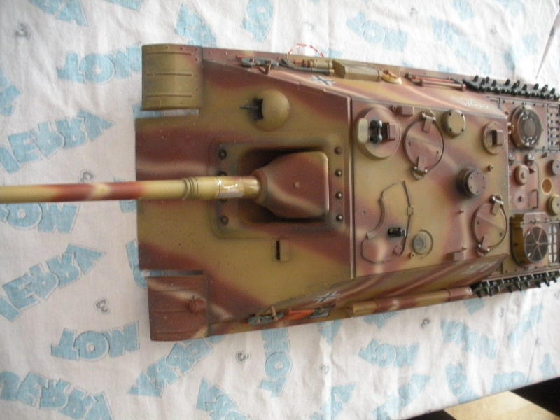 Jagdpanther ( nato nelle officine Sven?) Dscn3111
