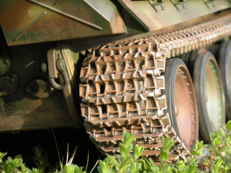 Jagdpanther ( nato nelle officine Sven?) Dscn3324