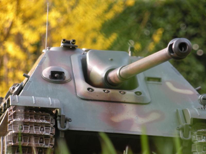 Jagdpanther ( nato nelle officine Sven?) Dscn3325