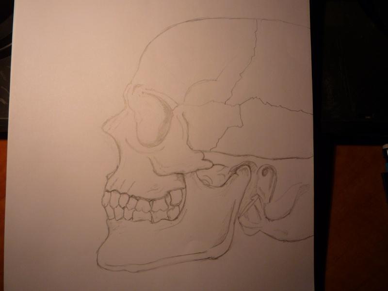 Nos coups de crayon, dessins et autres gribouillis... P1020428