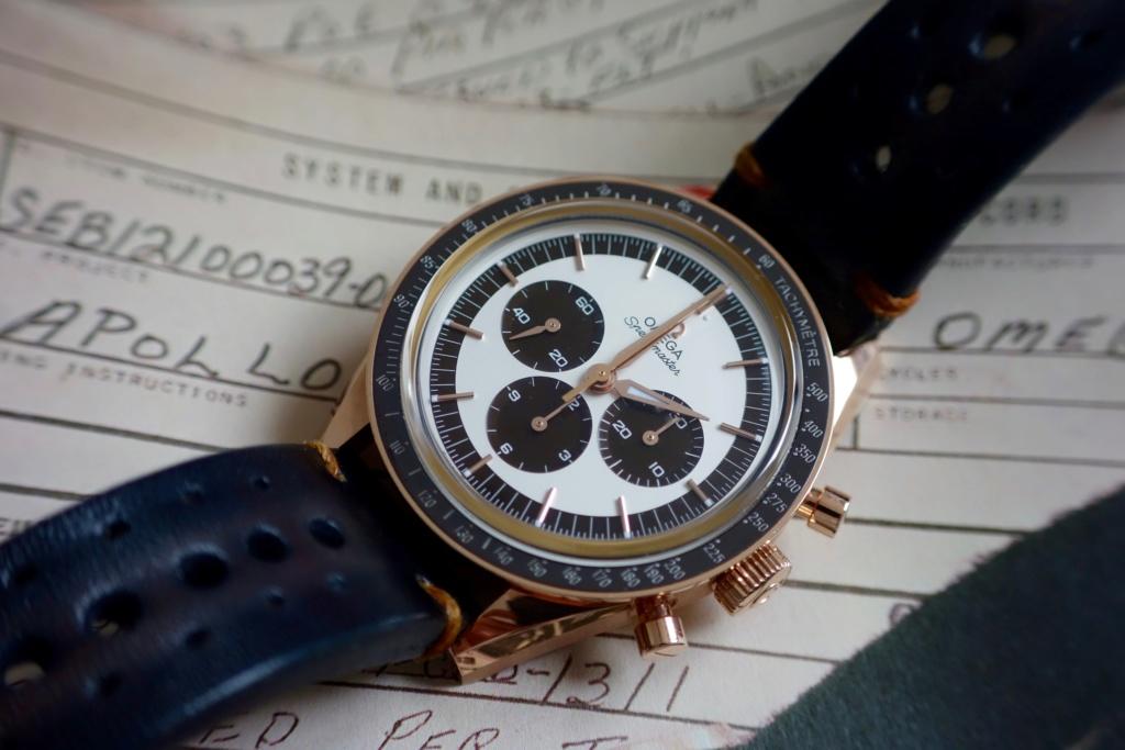Feu de vos montres sur bracelet rallye Dsc05612