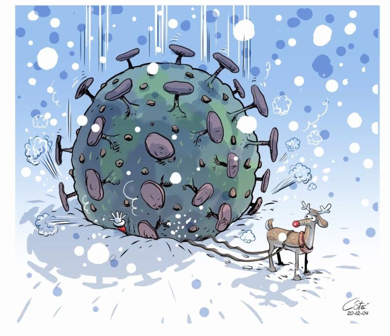 CAN 2020 (le Concours d'Avatars de Noël du forum) 12886610