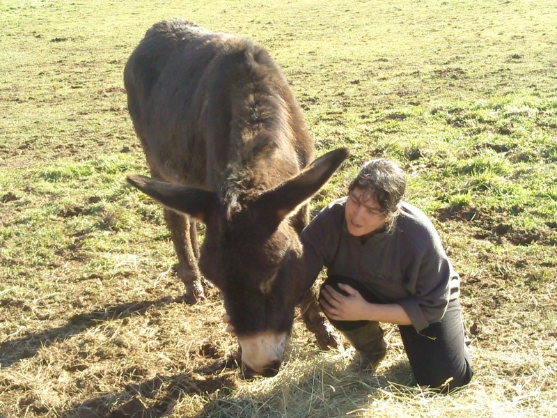 BOURRIFEE, renommée JOSETTE  - ONC âne née en 2010 - adoptée en août 2011 par Stephele12 - Page 3 Photo110