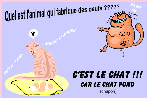 PAGE DETENTE ! - Page 6 Humour10
