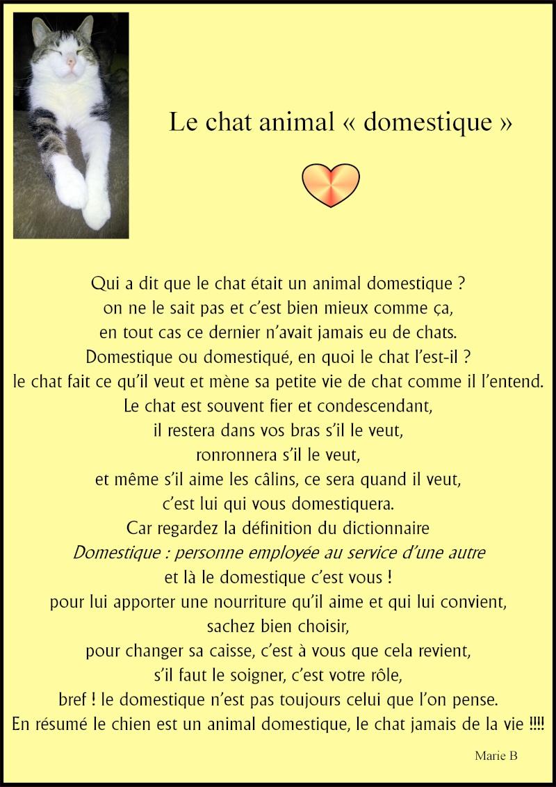 PAGE DETENTE ! - Page 6 Le_cha10