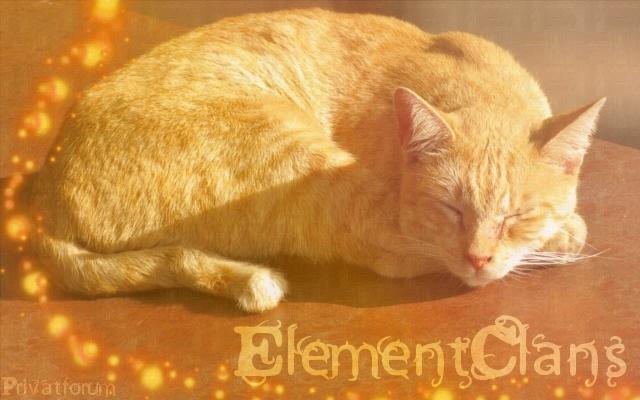 Die ElementClans