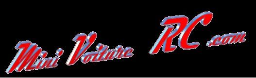 Vote concours de Logo Mini-Voiture-RC Mini_v14