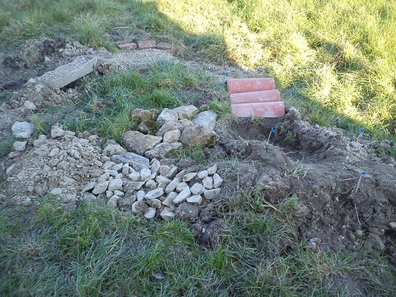 debut d un spot dans mon jardin Dsc_0011