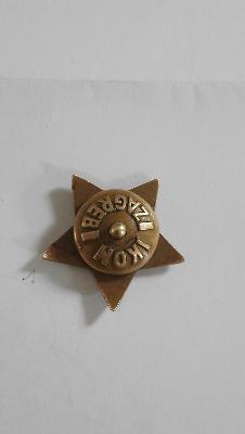 insigne etoile rouge Etoile11