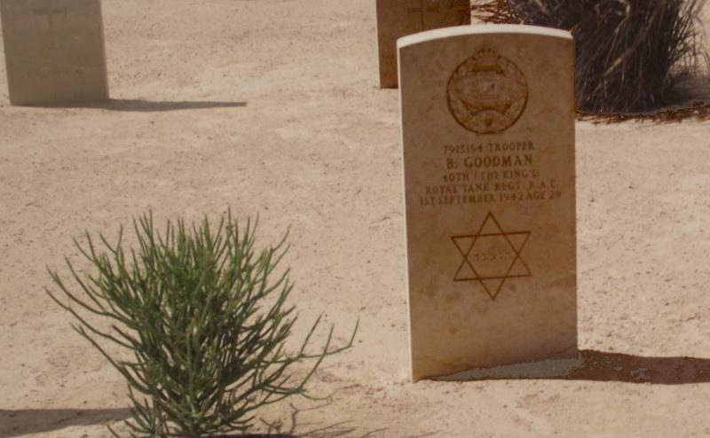 Israele, vogliamo parlarne? - Pagina 26 Stella10