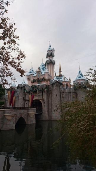 Séjour en Califormie ! Disneyland Californie oblige ! - Page 2 Dsc_2917