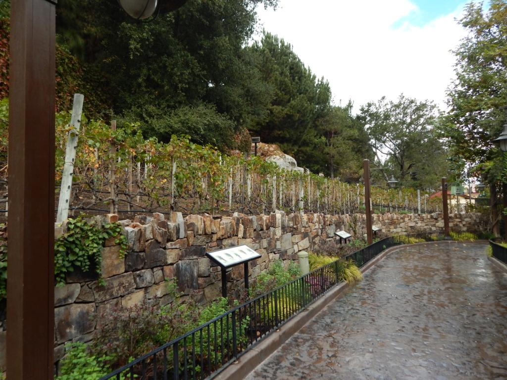 Séjour en Califormie ! Disneyland Californie oblige ! - Page 2 Dscn3242