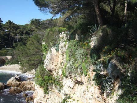 (06) Cap d'Antibes et parc de la Villa Eilenroc Dscf3619