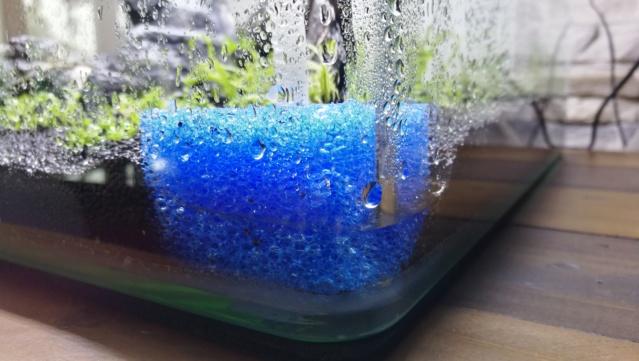 Présentation de mon nouveau nano 55 litres Img_2048
