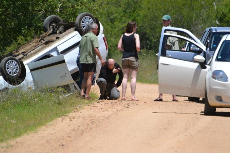 Olifant Rol kar in Kruger 2012-11-13 D5356310