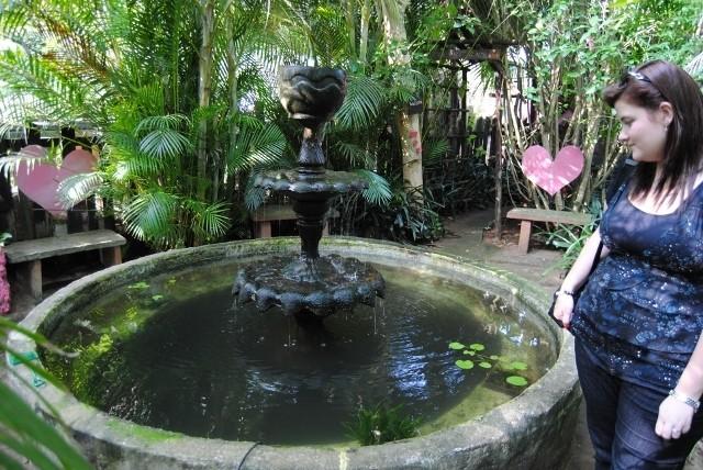 KZN North Koi pond Safari Dsc_0342