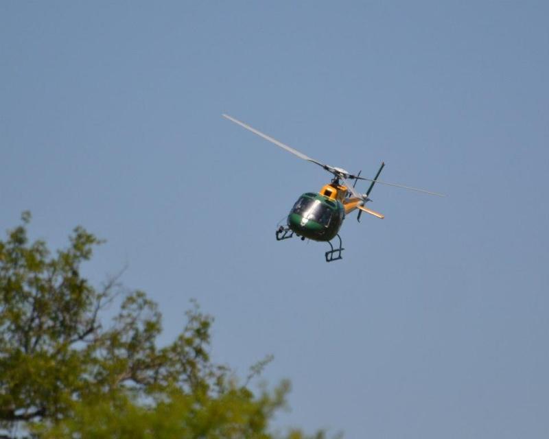 Olifant Rol kar in Kruger 2012-11-13 H5449310