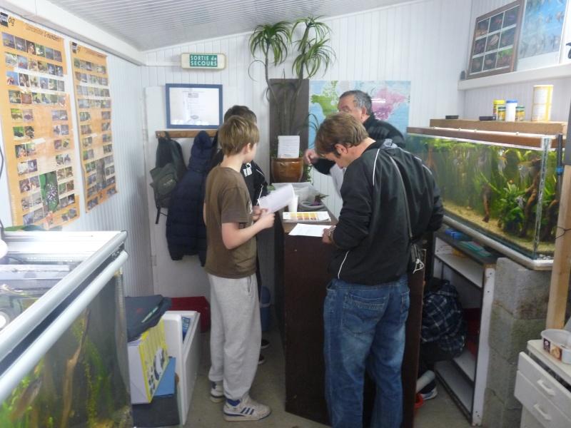 ACTIVITES CLUB AQUARIOPHILE DE PLOUESCAT 05_les10