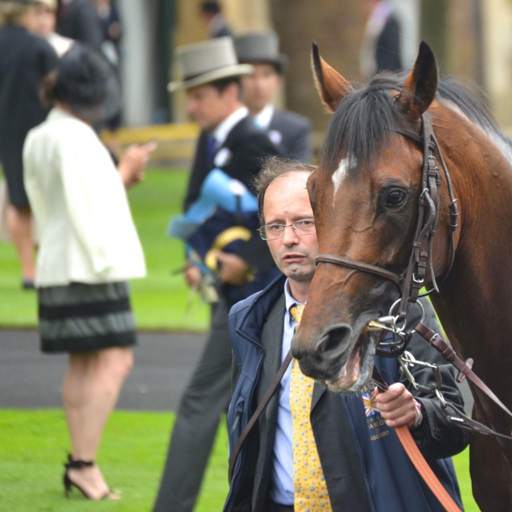 Royal Ascot Dsc_0018