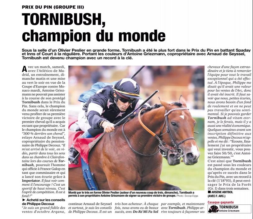Le compteur de victoires : 2784, Tornibush, 16/09/18 Tornib10